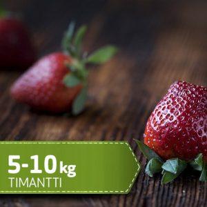 timantti-5
